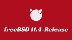 Реліз FreeBSD 11.4